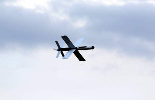 «Летать не умеет, но спеси много»: Украина провела испытания дрона-камикадзе «Тихий гром»