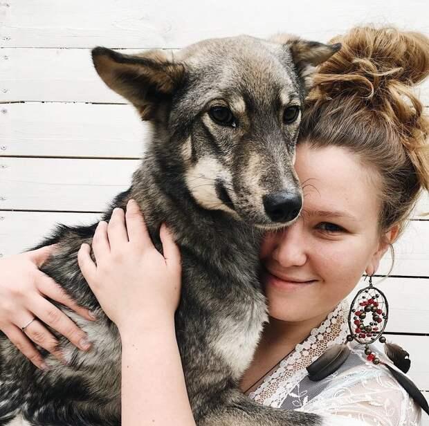 Девушка, которая приютила полсотни покалеченных животных