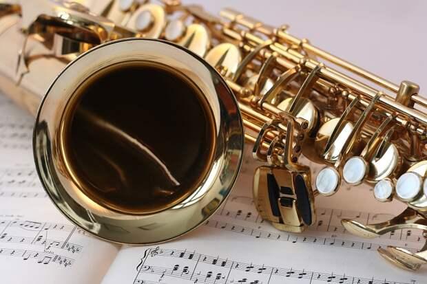 Музыкальный инструмент. Фото: соцсети