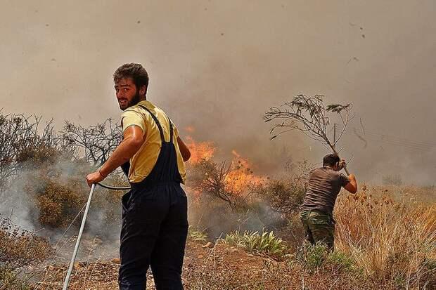 Жертвами лесных пожаров в США стали не менее 15 человек