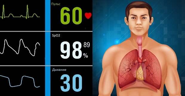 На какие показатели здоровья следует обратить внимание...