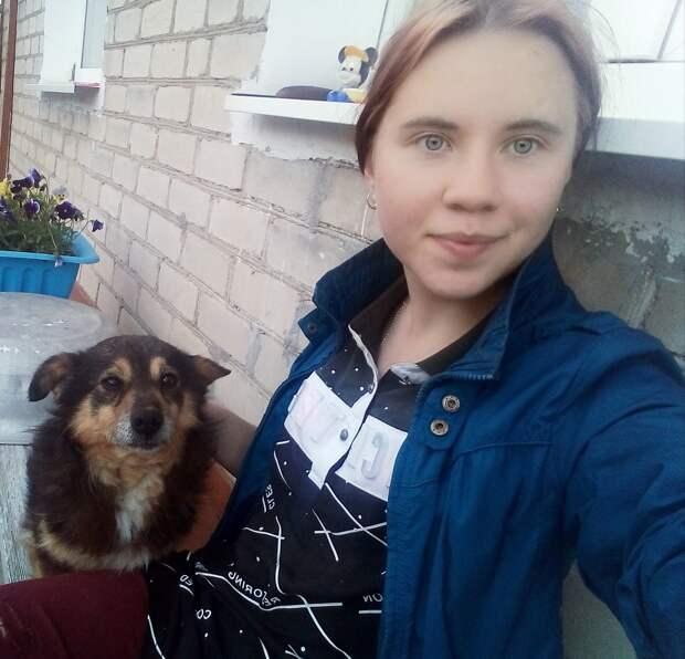 На остановке появился старенький доверчивый пес и стал выпрашивать у людей еду