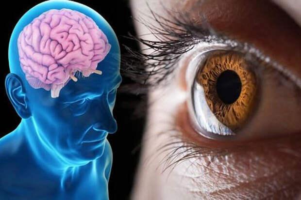 Обнаружить признаки болезни Альцгеймера можно по состоянию сетчатки глаза без сложных исследований