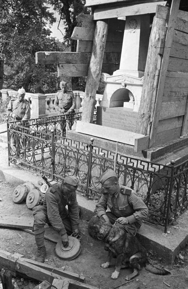 30 июля 1944 года. Саперы разминируют могилу Пушкина.  / Александр Грибовский /РИА Новости ria.ru