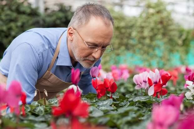 Человек и аромат: почему мы любим запахи