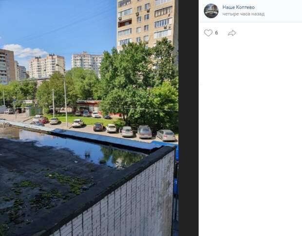 Фото дня: мини-пруд образовался на Михалковской