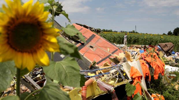«Предатели могут убить»: Свидетель готов раскрыть грязную правду о крушении «Боинга» MH17