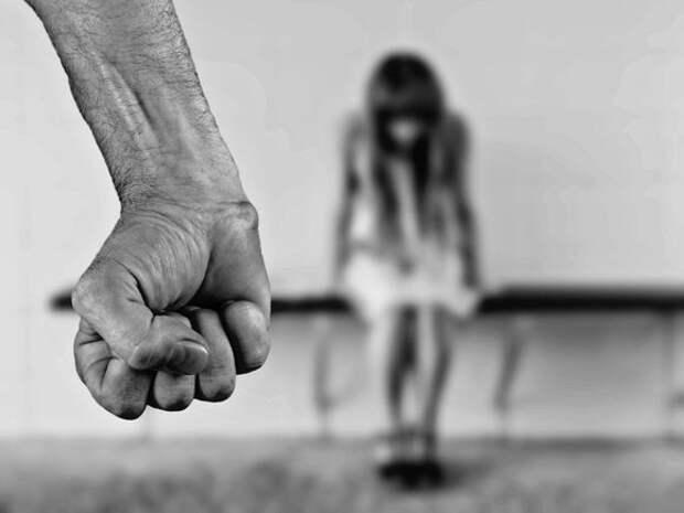 В Химках задержали педофила, несколько лет насиловавшего свою падчерицу