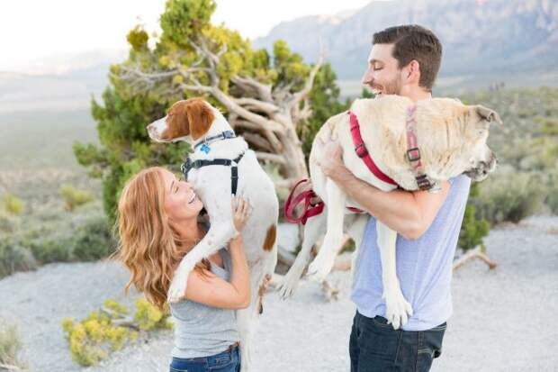 счастливая пара с собаками
