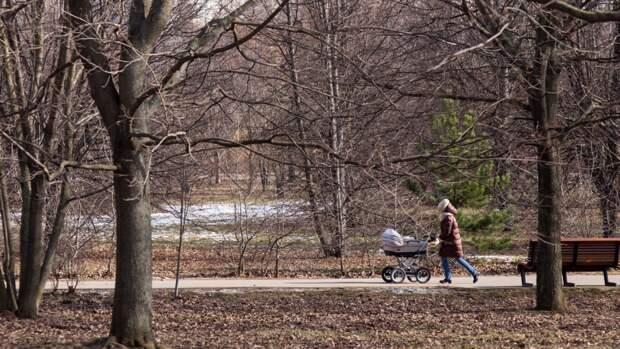Голикова: сумма маткапитала на первого ребенка может превысить 540 тыс. рублей в 2024 году