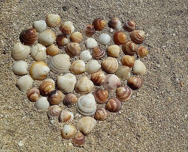 Пляж ДОЦ «Алые паруса»
