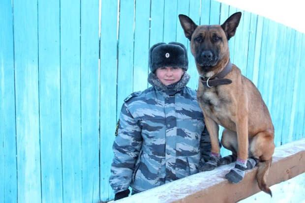 Зоны Якутии будут охранять южнокорейские клоны собак