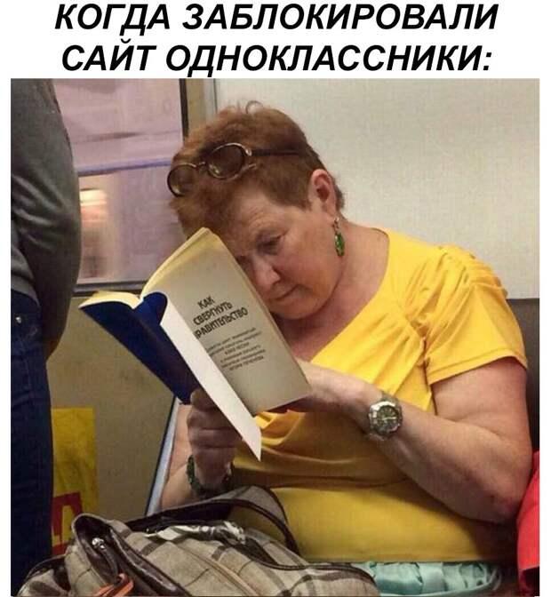 Смешные картинки с надписями до слез (11 фото)