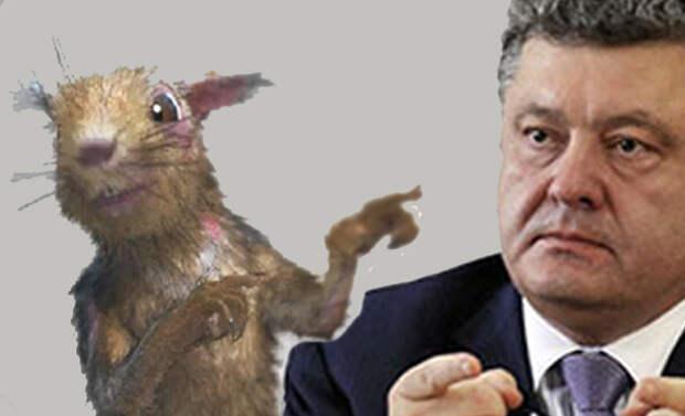 Порошенко решил забрать у России Черноморский флот в Севастополе