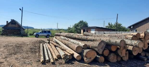 Более 300 пунктов переработки древесины легализовали в Удмуртии