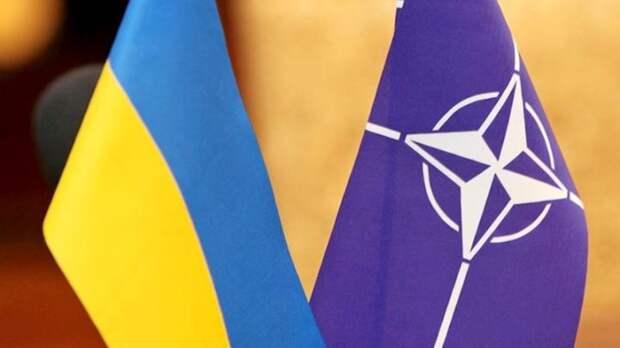 """""""Слить будет сложнее"""": одесский журналист пояснил, почему Украину не примут в НАТО"""