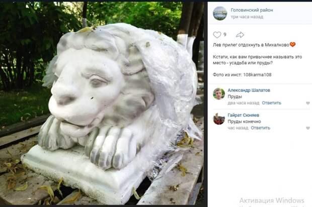 У Головинских прудов сфотографировали льва