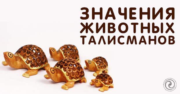 Значения животных талисманов