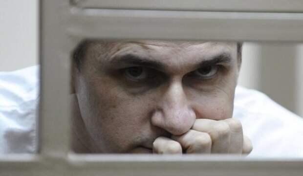ВКиеве объявился свидетель террористической деятельности Сенцова