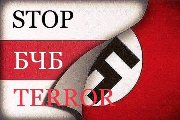 БЧБ и «живе Беларусь» внесут в перечень нацистской символики