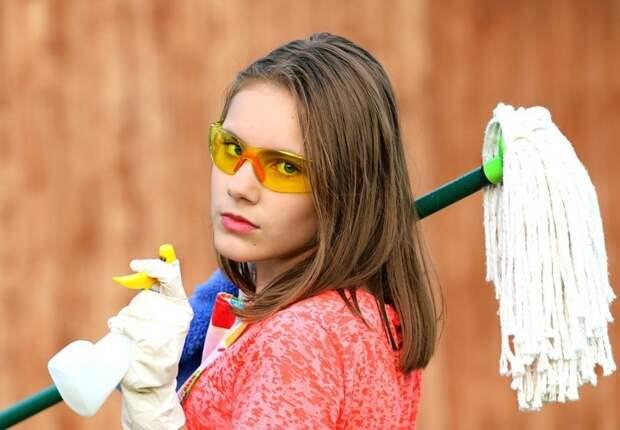Уборка. Фото: pixabay.com