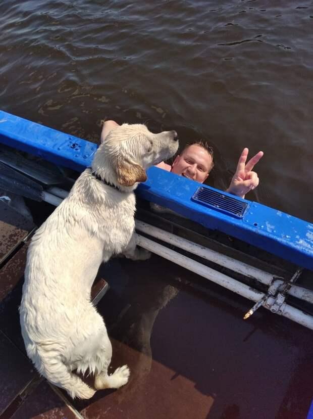 В Удмуртии спасатели вытащили из воды двух человек и собаку