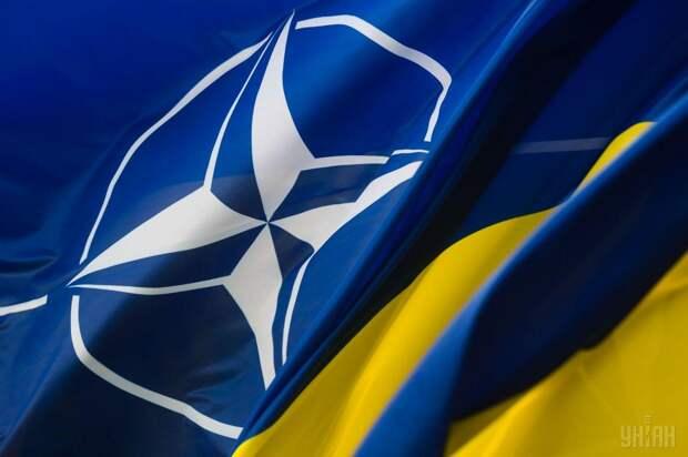 Стремление Киева в Североатлантический альянс выведет Варшаву к Черному морю