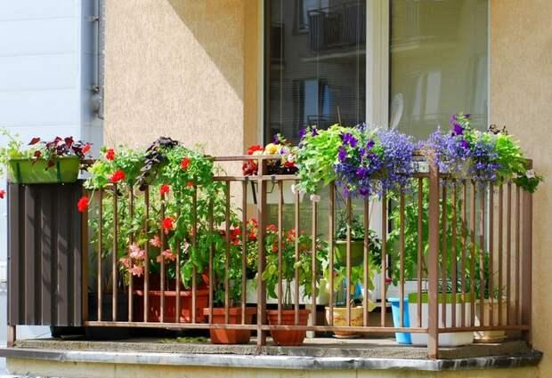11 иностранных особенностей жилья, которые просто сводят туристов с ума
