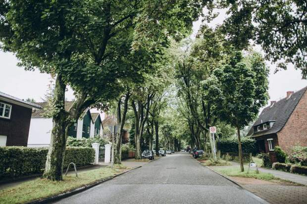 правила чистоты на улице