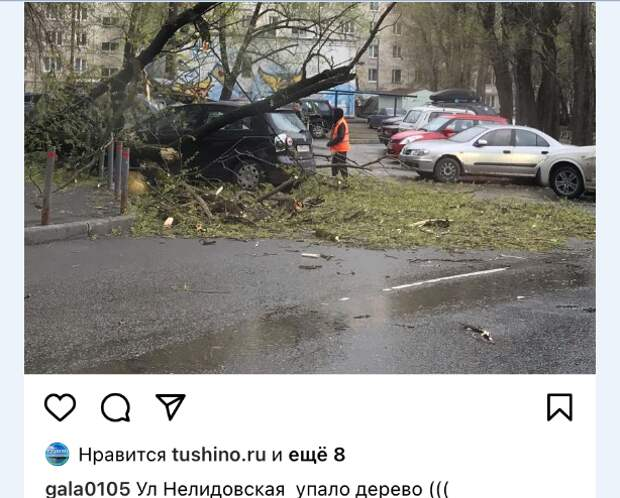 На Штурвальной дерево упало на машину