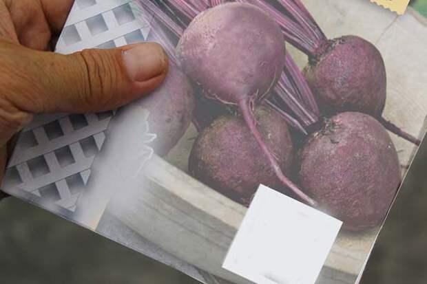 упаковка семян в руке