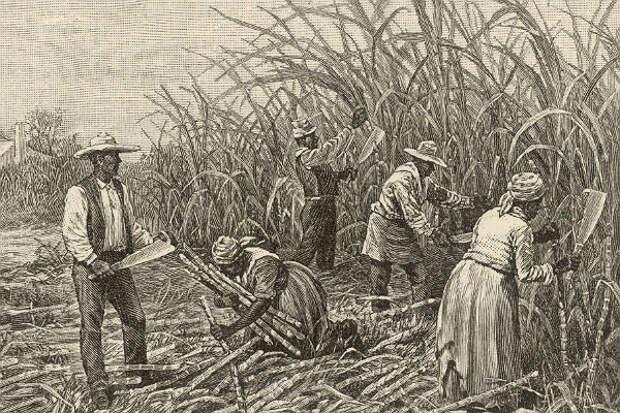 Соратник Трампа в сенате США назвал рабство «необходимым злом»