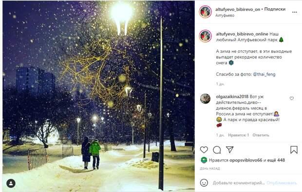 Фото дня: вечерняя прогулка в снегопад в Алтуфьевском парке