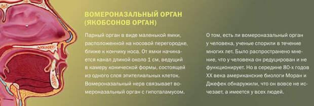 Ashampoo_Snap_2014.02.07_01h38m25s_019_ (700x235, 39Kb)