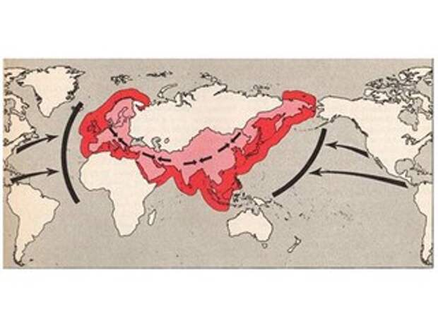 «Когда одновременно несколько точек взорвутся, России будет очень тяжело»