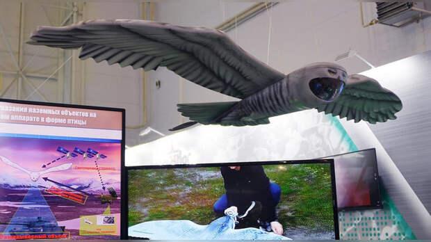 Путин заставил сову Гарри Поттера служить ВКС РФ!