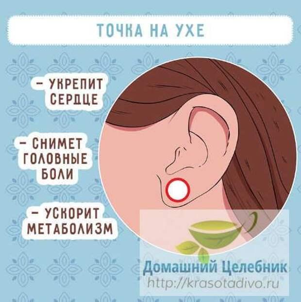 6 точек на ухе, которые вернут здоровье и хорошее самочувствие