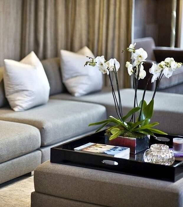 Журнальные столики, которые украсят интерьер вашего дома