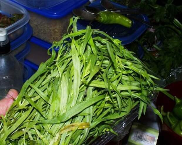 Зеленая аджика аджика, еда, рецепт, Перец, консервация на зиму, длиннопост