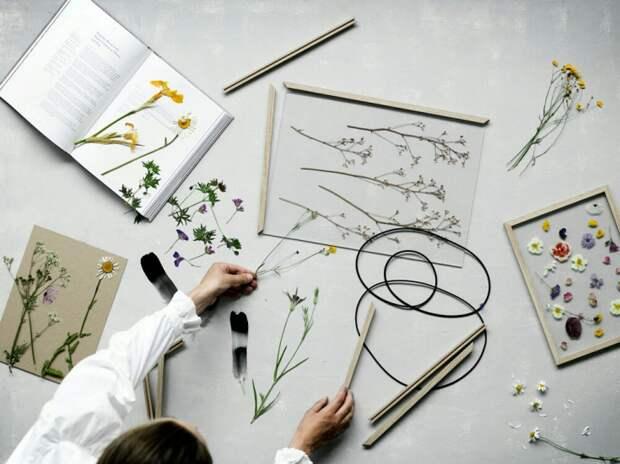 Подвесной гербарий (подборка)