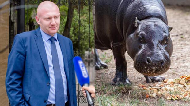 Два дня рожденья отметили в зоопарке Ростова: директора и бегемота-пенсионера
