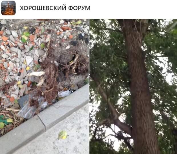 Подрядчику объяснили регламент проведения работ на улице Полины Осипенко — управа