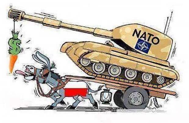 Чем закончится агрессия НАТО против России? Посчитали-прослезились