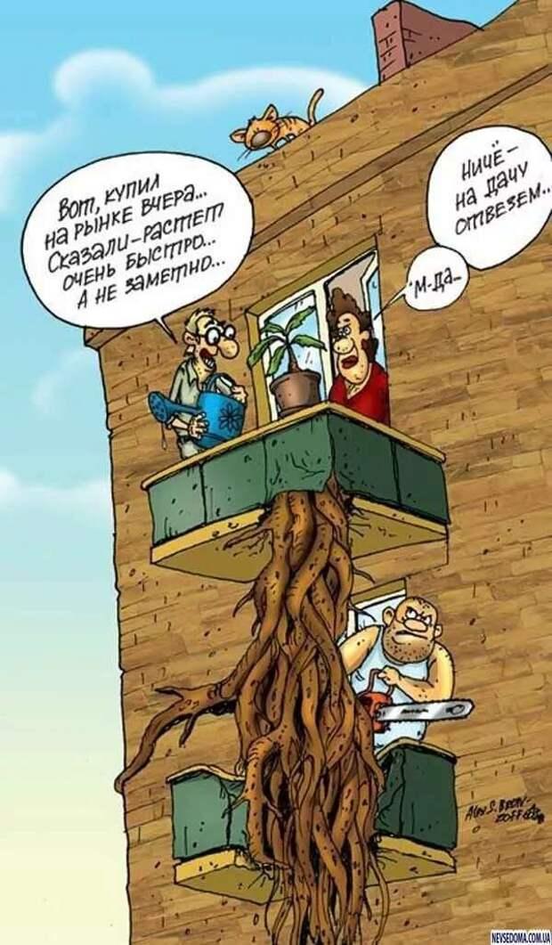 Неадекватный юмор из социальных сетей. Подборка chert-poberi-umor-chert-poberi-umor-19140625062020-5 картинка chert-poberi-umor-19140625062020-5