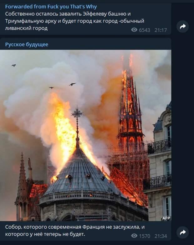 В Париже сгорел собор Парижской Богоматери