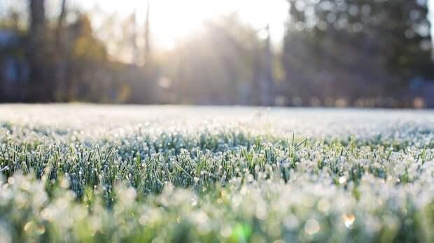 В Гидрометцентре прогнозируют заморозки в ряде регионов России