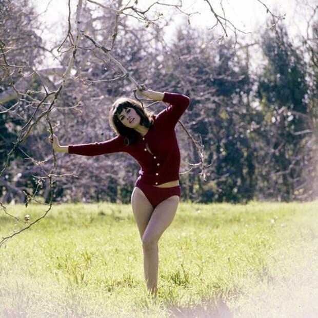 Ракель Уэлч американская актриса и певица родилась в 1940 году, сыграв роль в фильме «Фантастическое путешествие» в 1966 году стала знаменитостью и секс-символом.
