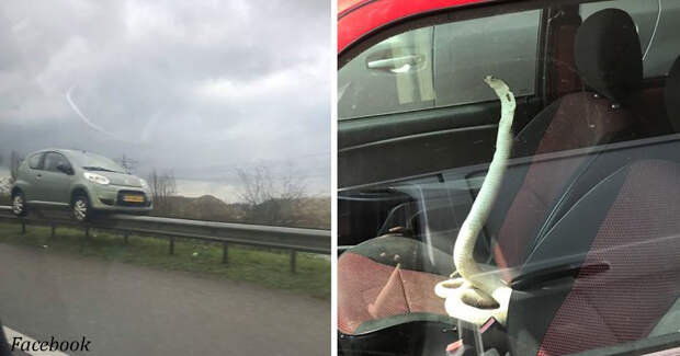 19 ну очень странных вещей, которые люди заметили на дорогах