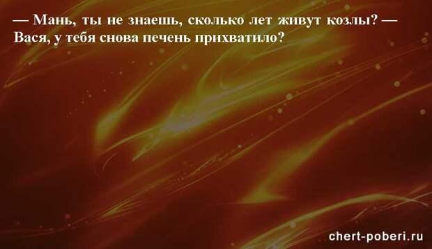 Самые смешные анекдоты ежедневная подборка chert-poberi-anekdoty-chert-poberi-anekdoty-33560230082020-12 картинка chert-poberi-anekdoty-33560230082020-12