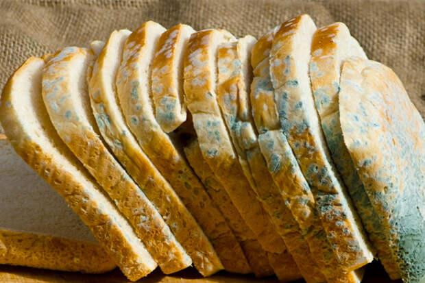 Хлеб с плесенью: как он влияет на тело